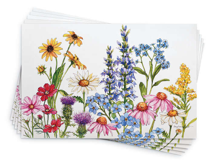 9811: Wildflowers Paper Placemats (Set of 24) (Product Detail)