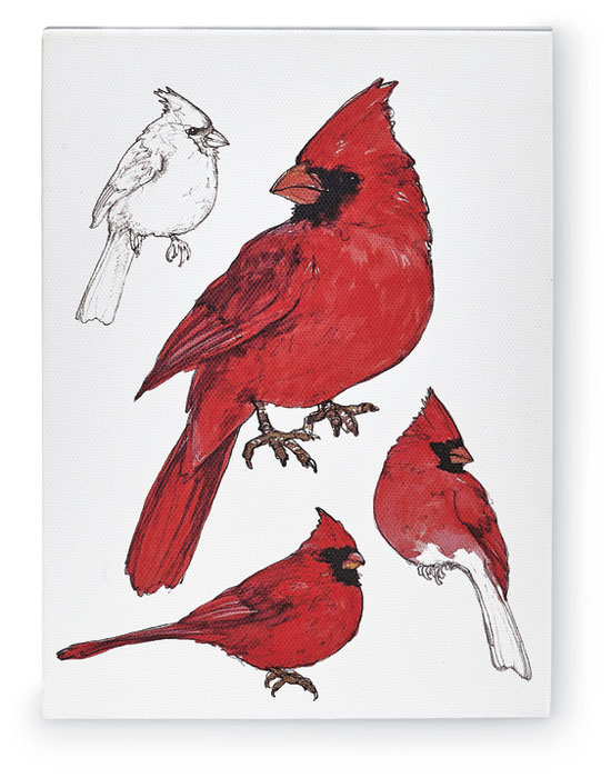 9822: Field Guide Wall Art - Male Cardinal (Product Detail)