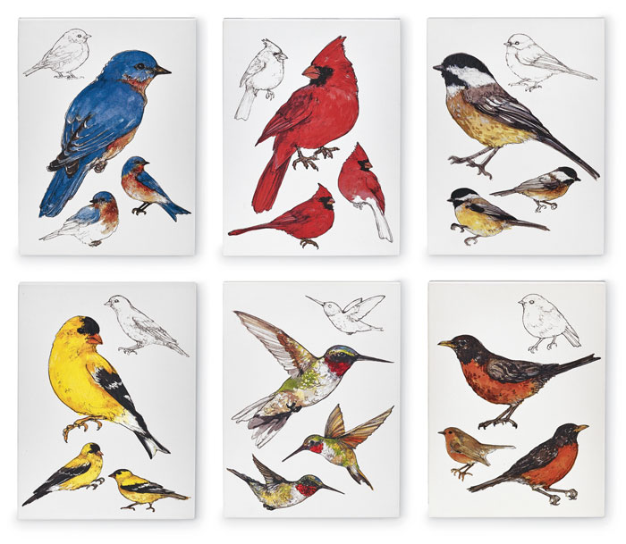 9827: Field Guide Wall Art - Set of Six (Product Detail)