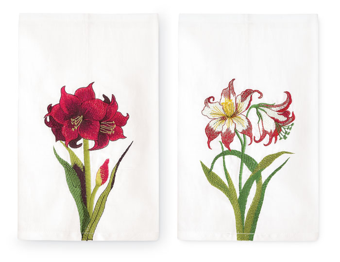 6079: Amaryllis Towels (Set of Two) (Product Detail)