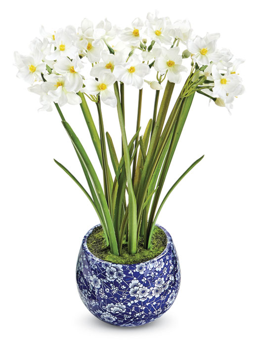 9218: Narcissus in Blue and White Pot (Product Detail)