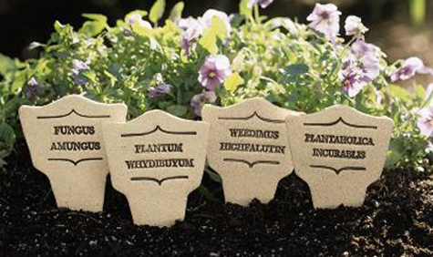 1925: Latin Plant Markers Set II (Set of Four) (Product Detail)
