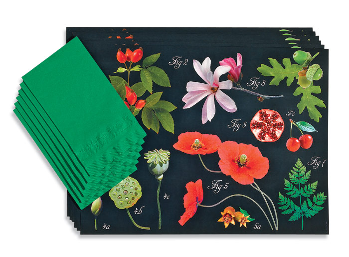 3508: Botanical Paper Placemats/Napkins (Set of Six) (Product Detail)