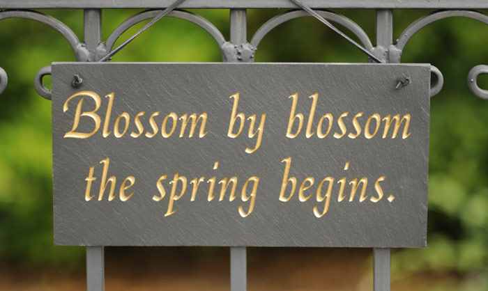 "4011: ""Blossom by Blossom"" Sign (Product Detail)"