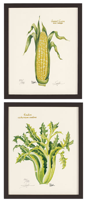 4748: Veggie Prints 2 - Corn and Endive (Set of Two) (Product Detail)