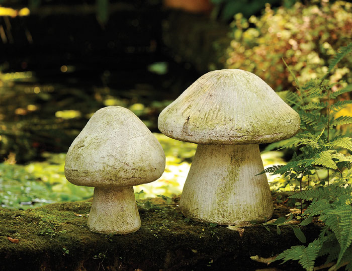 1435: Wild Mushrooms [Set of Two] (Product Detail)