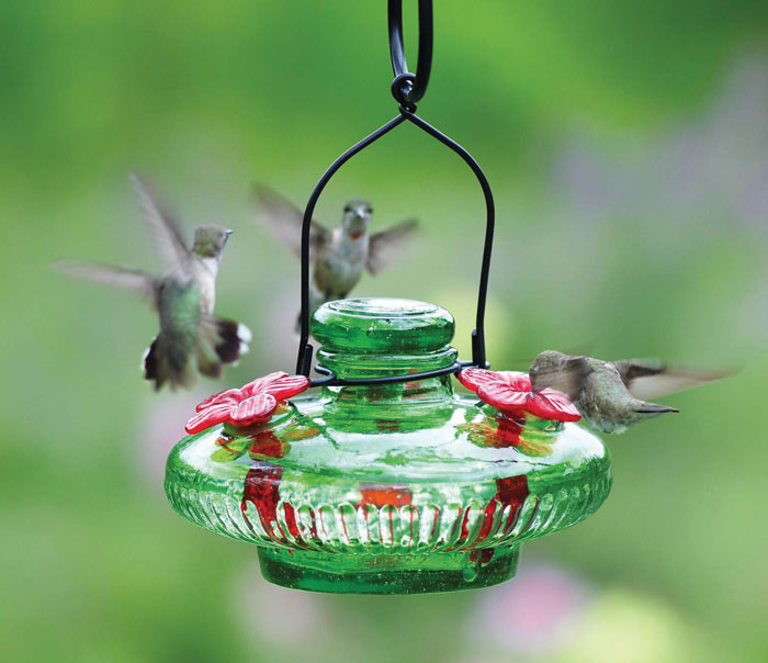 6485: Emerald Hummingbird Feeder (Product Detail)