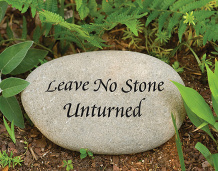 6646: Garden Stone - Leave No Stone Unturned  (Product Detail)
