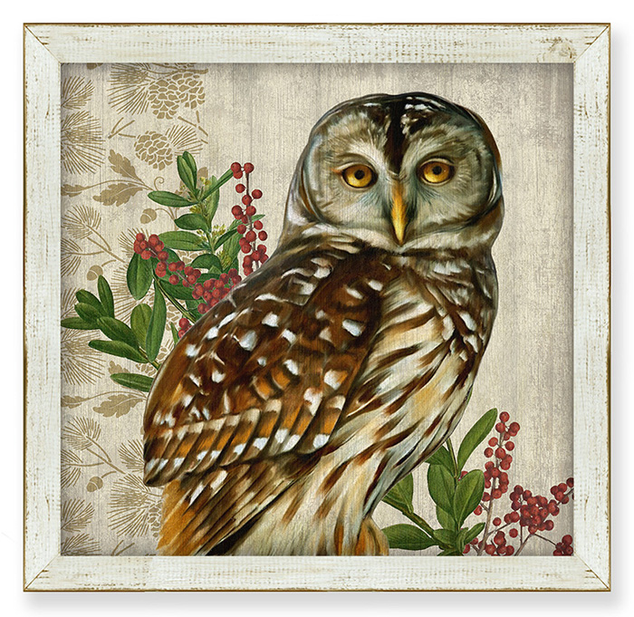 7854: Woodland Life Barred Owl Wall Art (Product Detail)