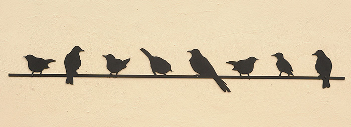 7809: Birds on a Wire (Product Detail)