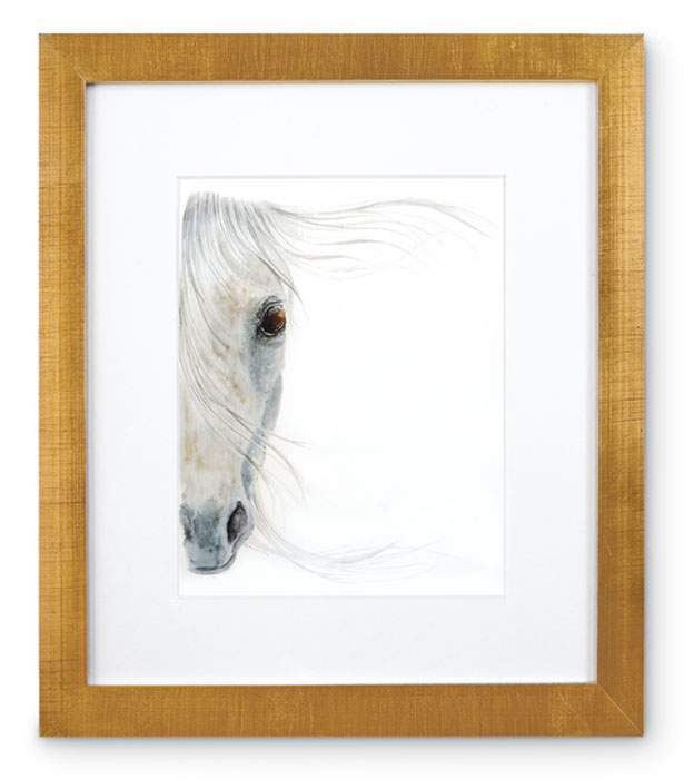 8375: Horse Portrait - White (Product Detail)